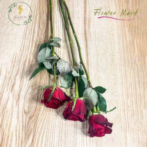 red rose flower stems