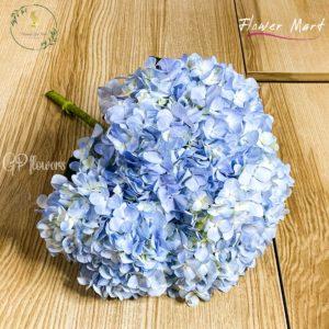 blue hydrangea flower stem