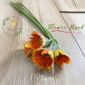 orange gerbera flower stems